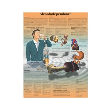 POSTER ALCOOLDÉPENDANCE